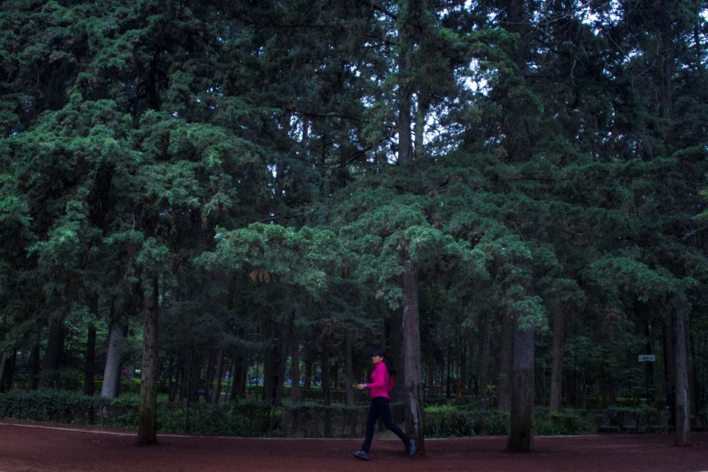Tras Agresion Piden Mas Seguridad En Bosque De Tlalpan