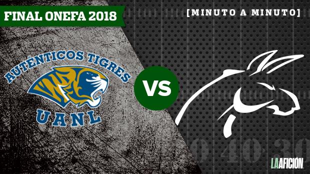 Burros Blancos vs Auténticos Tigres: En vivo l Final ONEFA