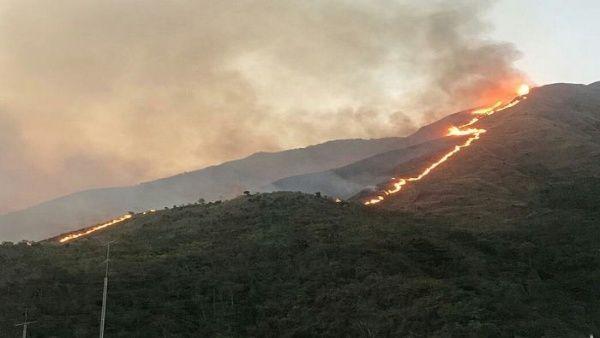 Incendio arrasa bosque en Waraira Repano, Caracas, Venezuela