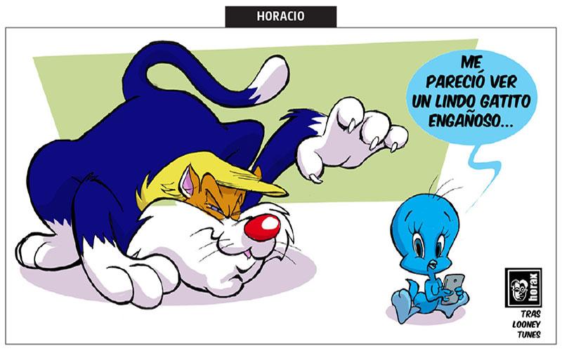 Lindo gatito engañoso - Horax