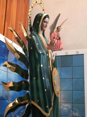 Creyentes aseguran que la han visto en piedras, tinacos, tortillas, cristales, árboles y hasta en un microondas.