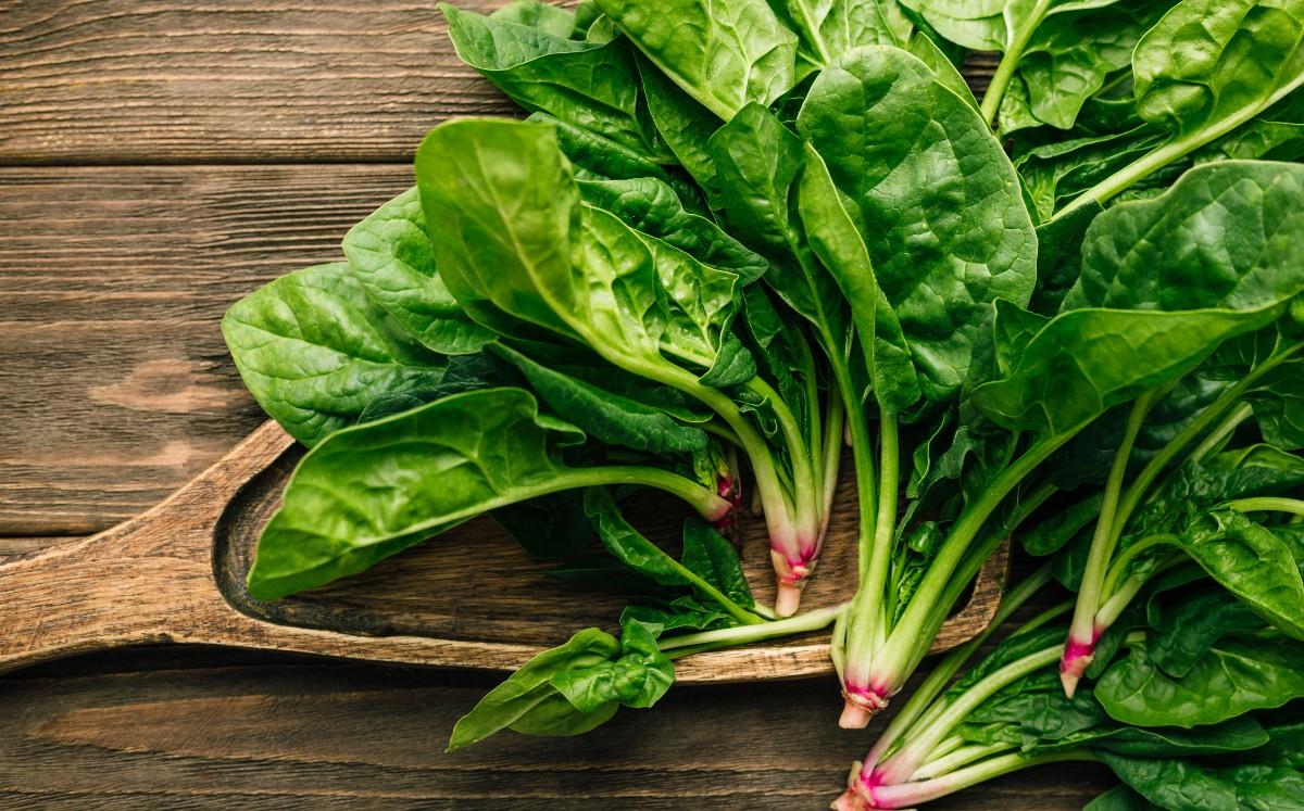 Espinacas, propiedades y beneficios de comerlas